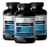 Kidney Health Support - KIDNEY SUPPORT Complex - Cardiovascular Health Care-3B