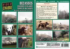 Bécasse : Chasses d'Irlande, terre de bécasses  - Chasse du petit gibier