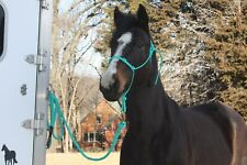 THOMEY NATURAL HORSE TRAINING 4-knot HALTER & 12-foot LEAD ROPE~ TURQUOISE