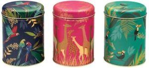 SARA MILLER Set of 3 Gold Round Biscuit TIN Kitchen Storage Tea Caddies Gift Box