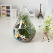 Pear Crystal Glass Vase Home Decor Planter Terrarium Container Hydroponic Pot
