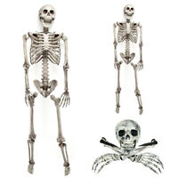 Halloween Scary Horror Human Skull Skeleton Full Size Haunted House Trick Props