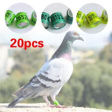 20Pcs Pigeon Identify GB Foot Rings Leg Bands Aluminium Rings 8mm Plastic
