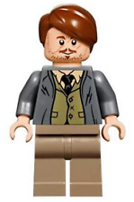 LEGO®  Harry Potter - Professor Lupin from 75955