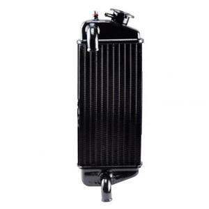 Radiateur de refroidissement Teknix pour moto Beta 50 RR Après 2005 Neuf