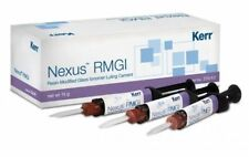 Kerr Nexus Rmgi Resin Glass Ionomer Luting Cement 5 Gm Dual Mixing Syringe Dent