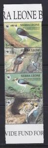 SIERRA LEONE 1994 BIRD STAMPS BIRDS WWF MIDDLE STRIP  MNH - BIRDL233