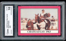 1990 Chateaugay Horse Star Cards Rare Rookie card Gem 10 #89