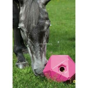 Fun Horse Treat Ball Equine Pony Feeder Toy Rest Training Horse Toy Balls