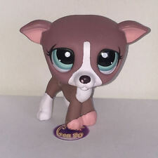 Littlest PetShop Chien LEVRIER 1585 DOG DACHSHUND Pet Shop I25