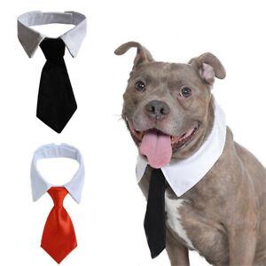 Adjustable Tuxedo Bow Ties Formal Tie Dog Necktie White Collar Pet Accessories