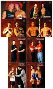 """TNA WRESTLING """"8 CARD TAG TEAMS SET"""" AMW, JAMES STORM, CM PUNK!!!"""