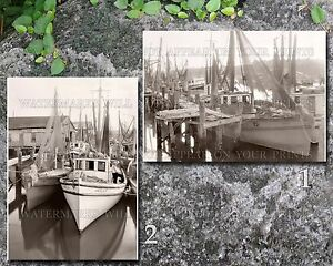 Shrimp boats St. Augustine Florida FL harbor pier wharf nets fleet photos lot