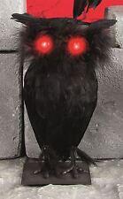 27CM LIGHT UP FLASHING EYES BLACK OWL BIRD FEATHERS HORROR SCARY HALLOWEEN PROP