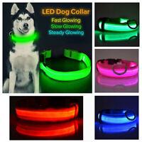 SAFETY LED Dog Pet Light Up Collar Night Glow Adjustable Bright Color
