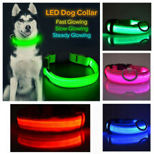 Led Light up Dog adjustable Collar for Safety Blue Green Pink Collar