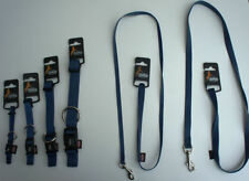 Colliers bleus pour petits chiens en nylon pour chien
