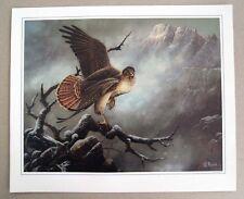 Vintage 1986 Ted Blaylock Hawk Print