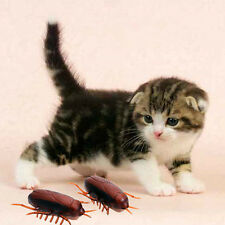 Electronic Pet Cats Toy With Battery Cockroach Interactive Toys Pet Accessory
