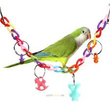 1PC Acrylic Swing Ladder Toy for Pet Parrot Birds Chew Play Climbing Hanging Toy