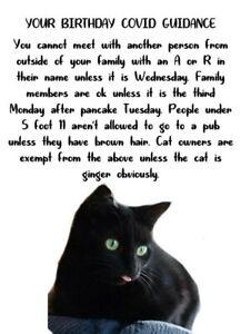 funny black cat isolation lockdown  Birthday Card gift friend, family, anyone