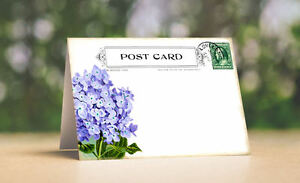 HYDRANGEA POSTCARD TENT STYLE WEDDING PLACE CARDS or TABLE CARDS #603