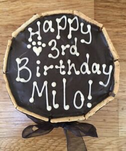 """🐶The Cornish Barkery WHEAT & GLUTEN FREE Dog Personalised Gift Birthday Cake 4"""""""