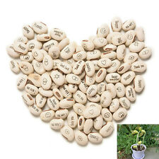 100 Magic White Bean Seeds Plant Growing Message Word Love FG