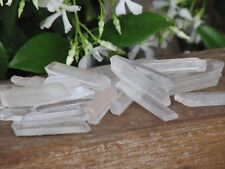 Natural Raw Clear Quartz Crystal Points & Pieces x 8  20-40mm - Omni New Age