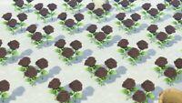 50 Black roses Flowers - Animal Crossing New Horizons
