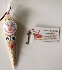Santa Magic Key & Reindeer Food Christmas Eve