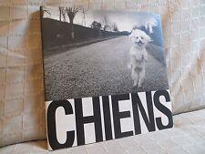 Cheins photographies de Michel Vanden Eeckhoudt