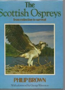 The Scottish Ospreys  Philip Brown. from extinction to survival
