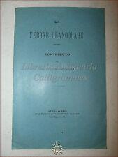 MEDICINA: LA FEBBRE GLANDOLARE Contributo di Telesforo Fiori 1900 Vallardi Estr.