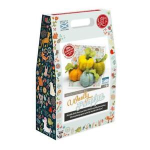 Woolly Pumpkins Needle Felting Kit - Crafty Kit Made in UK