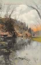 Arlington Iowa~Boy Watches Man Fishing~Springtime In The Woods~1910 PC