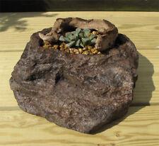 BONSAI POT, Stone, Rock, PRETTY RARE, B-19