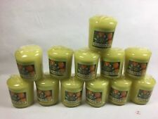 WILD PASSION FRUIT Yankee Candle VOTIVE candles lot of 12 votives new