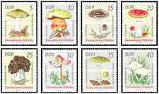Timbres Champignons Allemagne RDA 1613/20 ** lot 17273