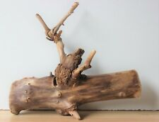 Treibholz Schwemmholz  Driftwood 1 Wurzel Terrarium Dekoration Garten 38 cm
