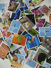 Rewe Sammelbilder Unsere Wunderwelt Sammelsticker Sticker 10 aussuchen fr. Wahl