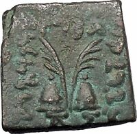 ANTIALKIDAS 145BC Baktrian Indo- Greek Ancient Coin of India Zeus Gemini i46909