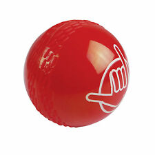 Cricket Ball Red from Wahu BMA322