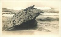 C-1910 Iguana Rock Ocean Waves RPPC real photo postcard 10038