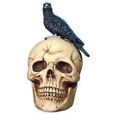 "Giant 25"" Raven on Skull Halloween Home Garden Decorative Accessory Figurine"