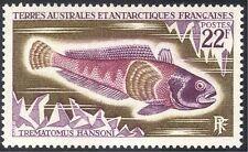 Fsat/TAAF 1971 Hanson's nototenia/pescado/conservación de la naturaleza/Marine/1v (n23491)