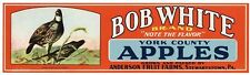 BOB WHITE Vintage Stewartstown Pennsylvania Apple Crate Label, AN ORIGINAL LABEL