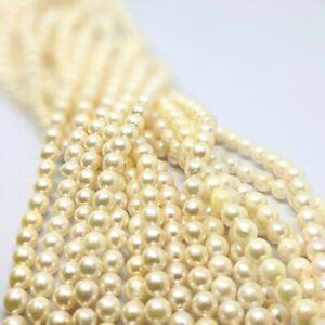 Beautiful Cream Akoya Pearl Loose String, 6 - 6.5mm, for jewellery making