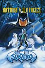 Batman The Animated Series Mr Freeze Subzero Poster 24x36 inches