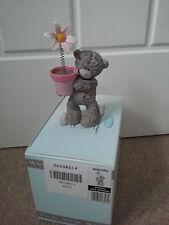 Me To You printemps a ressorts Figurine coffret fleur Tatty Teddy